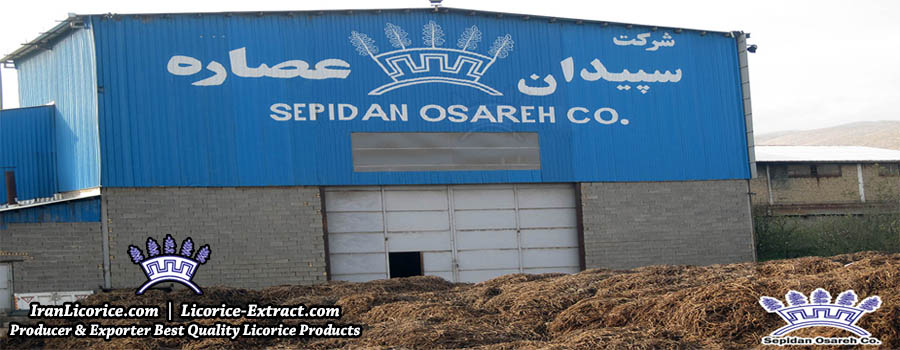 Licorice Manufactures Factory Iran Licorice Sepidan Osareh Co Root